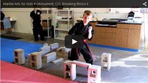 "This short video has Page Rank and DOMINATES local search for ""martial arts for kids"""